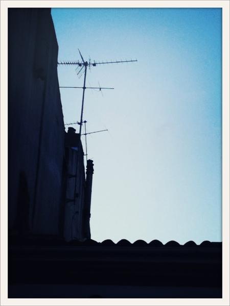 20110424-085213.jpg