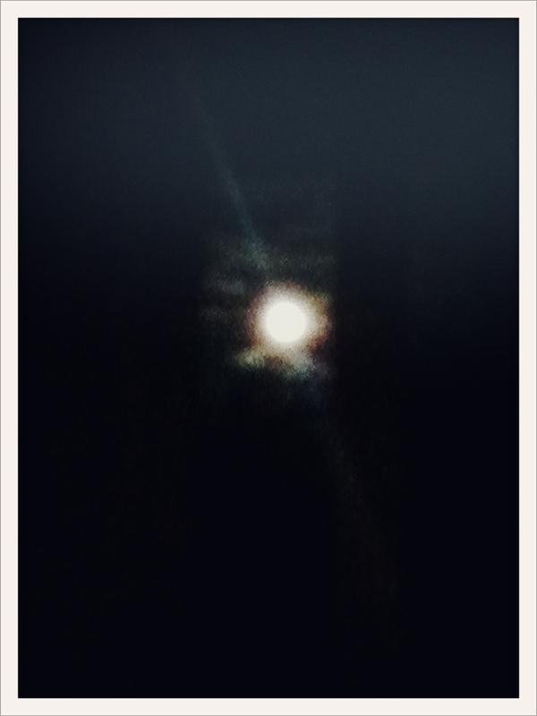 20110614-103923.jpg